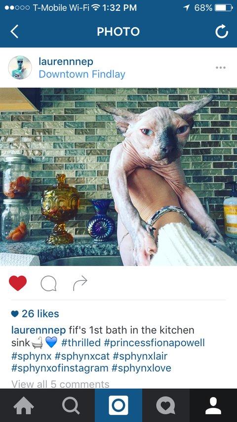 Instagram accidental like - tips by Emily Binder - laurennnep