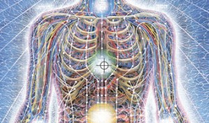 Chakras by Alex Grey