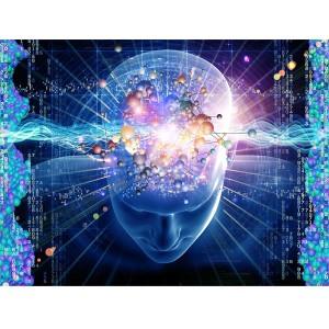 human brain EMF