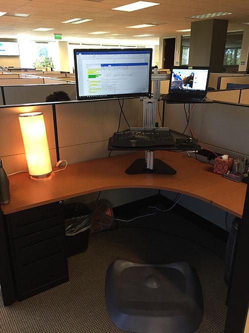 Ergo Desktop Hybrid Kangaroo at Emily's office