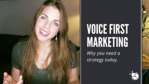 Emily Binder voice marketing strategy blog - Beetle Moment
