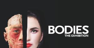 BODIES The Exhibition logo